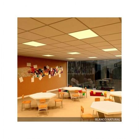 Foco Proyector de LEDs para Exterior 10W 850lm 12-24VDC